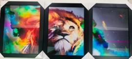 Quadro trio de  madeira com moldura, com vidro ( Leão aurora boreal)